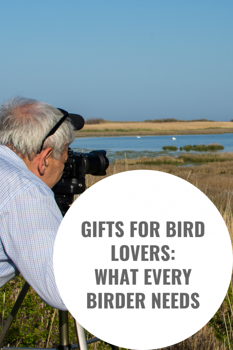 Gifts for Bird Lovers What Every Birder Needs